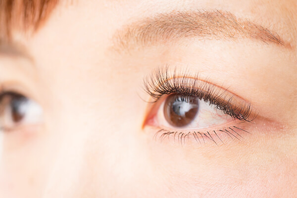 eyelash LuLu